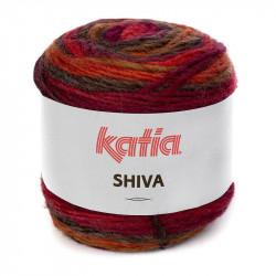 SHIVA 407