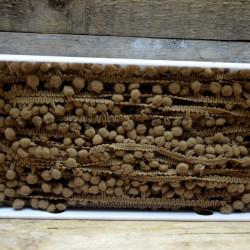 Prýmek s bambulkami (cena za 1m)